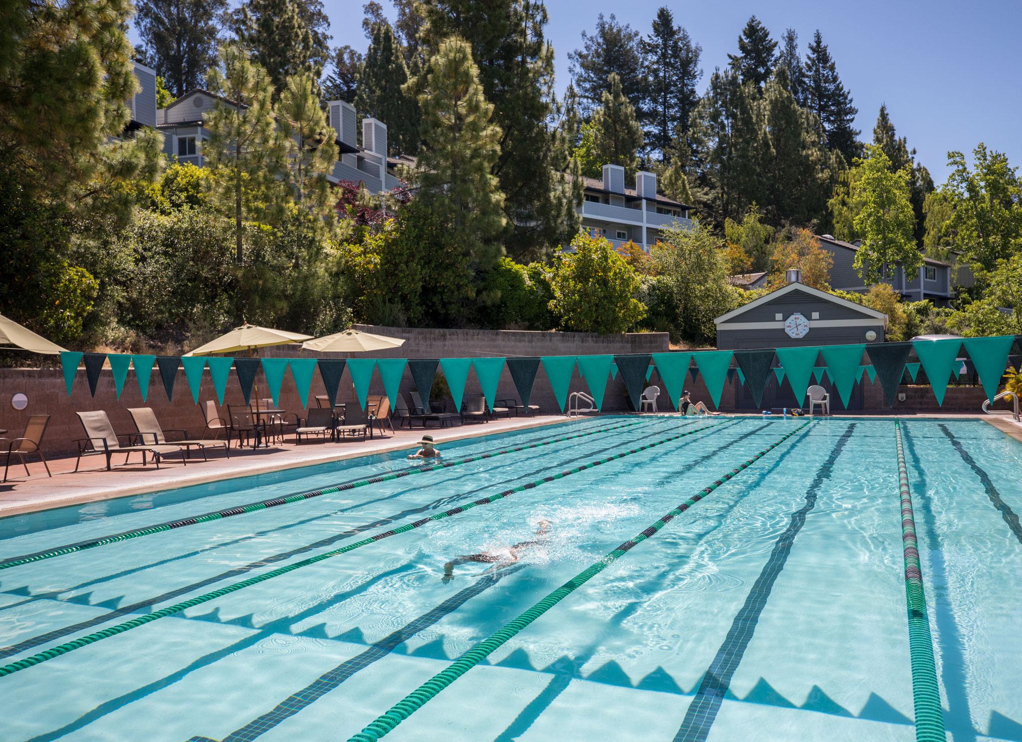 Flamingo Resort Health Club Pool